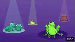 frog-video
